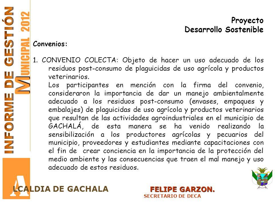 M M UNICIPAL 2012 A FELIPE GARZON. LCALDIA DE GACHALA FELIPE GARZON. SECRETARIO DE DECA Proyecto Desarrollo Sostenible Convenios: 1. CONVENIO COLECTA: