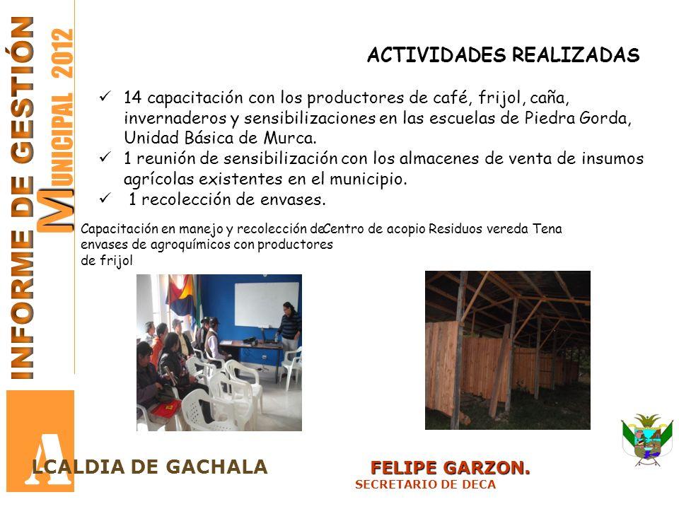 M M UNICIPAL 2012 A FELIPE GARZON. LCALDIA DE GACHALA FELIPE GARZON. SECRETARIO DE DECA ACTIVIDADES REALIZADAS 14 capacitación con los productores de