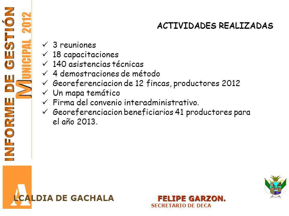 M M UNICIPAL 2012 A FELIPE GARZON. LCALDIA DE GACHALA FELIPE GARZON. SECRETARIO DE DECA ACTIVIDADES REALIZADAS 3 reuniones 18 capacitaciones 140 asist