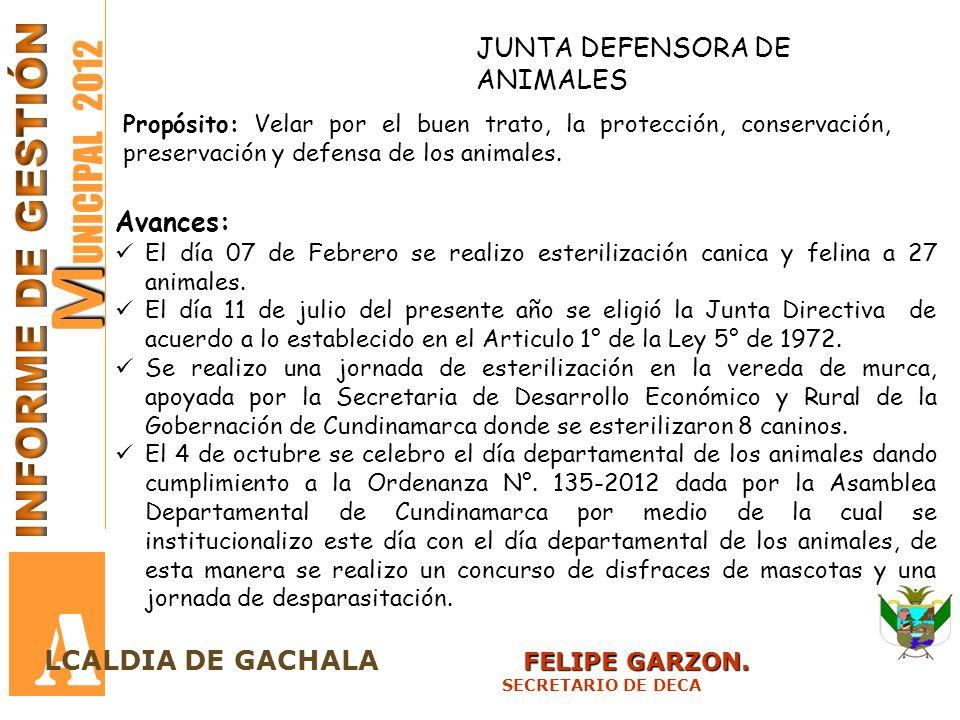 M M UNICIPAL 2012 A FELIPE GARZON. LCALDIA DE GACHALA FELIPE GARZON. SECRETARIO DE DECA JUNTA DEFENSORA DE ANIMALES Propósito: Velar por el buen trato