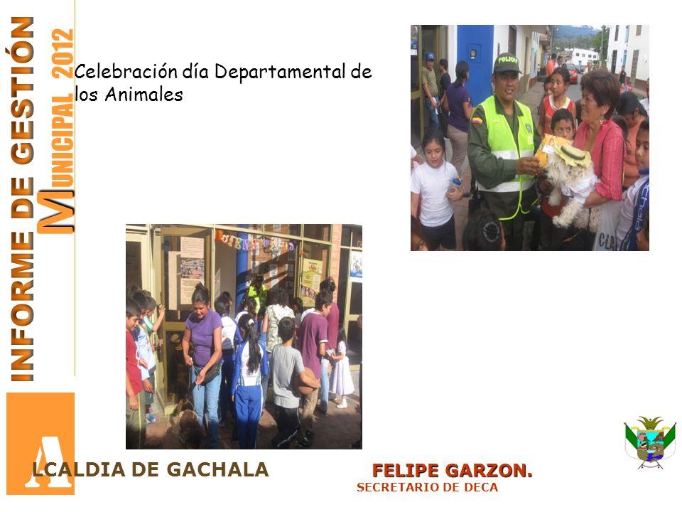 M M UNICIPAL 2012 A FELIPE GARZON. LCALDIA DE GACHALA FELIPE GARZON. SECRETARIO DE DECA Celebración día Departamental de los Animales