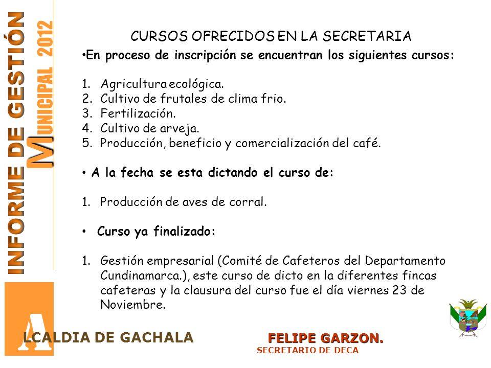 M M UNICIPAL 2012 A FELIPE GARZON. LCALDIA DE GACHALA FELIPE GARZON. SECRETARIO DE DECA CURSOS OFRECIDOS EN LA SECRETARIA En proceso de inscripción se