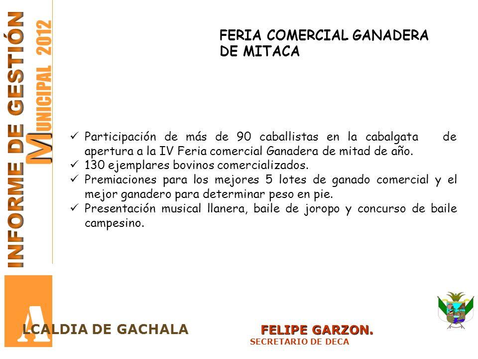 M M UNICIPAL 2012 A FELIPE GARZON. LCALDIA DE GACHALA FELIPE GARZON. SECRETARIO DE DECA FERIA COMERCIAL GANADERA DE MITACA Participación de más de 90