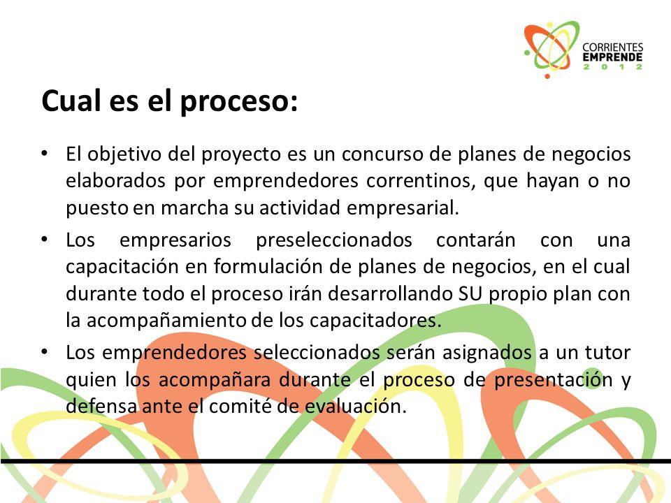 Cual es el proceso: El objetivo del proyecto es un concurso de planes de negocios elaborados por emprendedores correntinos, que hayan o no puesto en marcha su actividad empresarial.