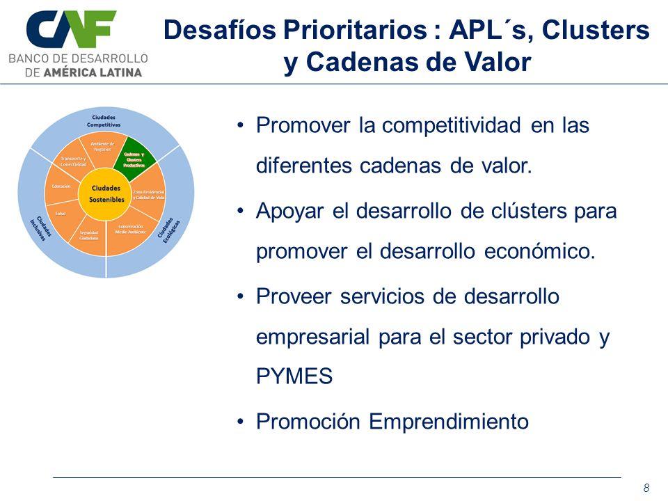 Promover la competitividad en las diferentes cadenas de valor. Apoyar el desarrollo de clústers para promover el desarrollo económico. Proveer servici