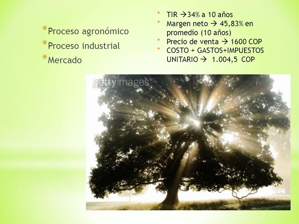 * Proceso agronómico * Proceso industrial * Mercado *TIR 34% a 10 años *Margen neto 45,83% en promedio (10 años) *Precio de venta 1600 COP *COSTO + GASTOS+IMPUESTOS UNITARIO 1.004,5 COP