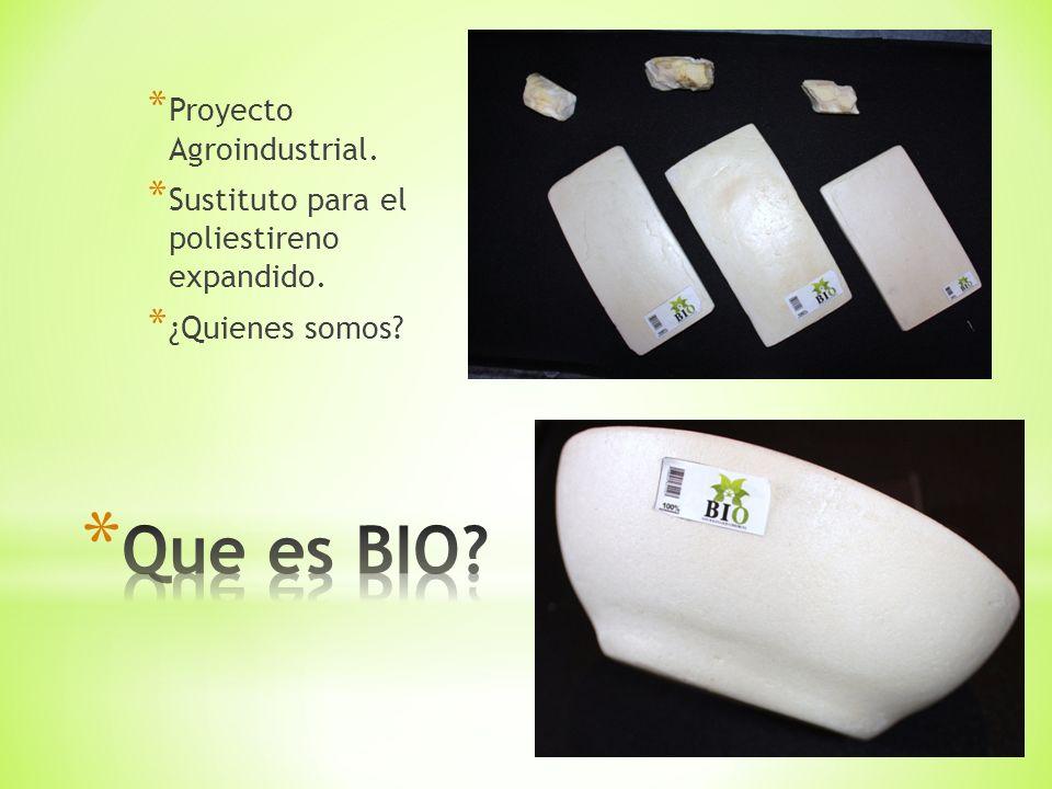 * Proyecto Agroindustrial. * Sustituto para el poliestireno expandido. * ¿Quienes somos?