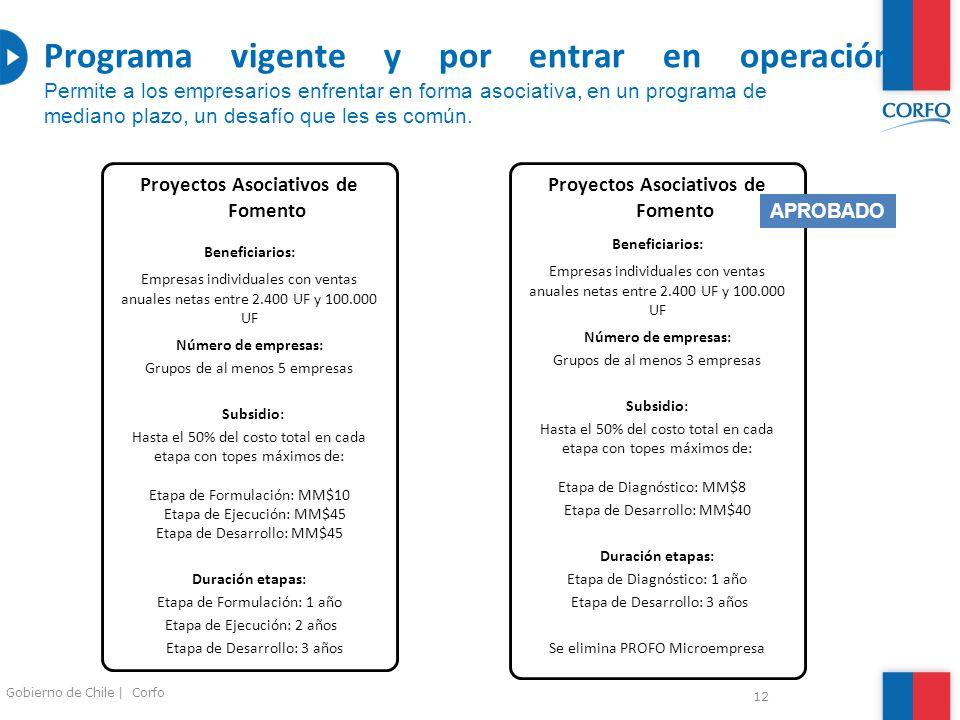 12 Gobierno de Chile | Corfo Proyectos Asociativos de Fomento Beneficiarios: Empresas individuales con ventas anuales netas entre 2.400 UF y 100.000 U