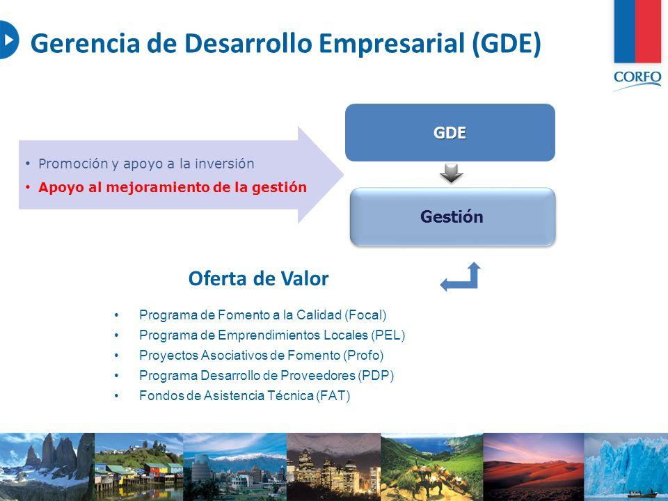 6 Gerencia de Desarrollo Empresarial (GDE) GDE Gestión Promoción y apoyo a la inversión Apoyo al mejoramiento de la gestión Programa de Fomento a la C