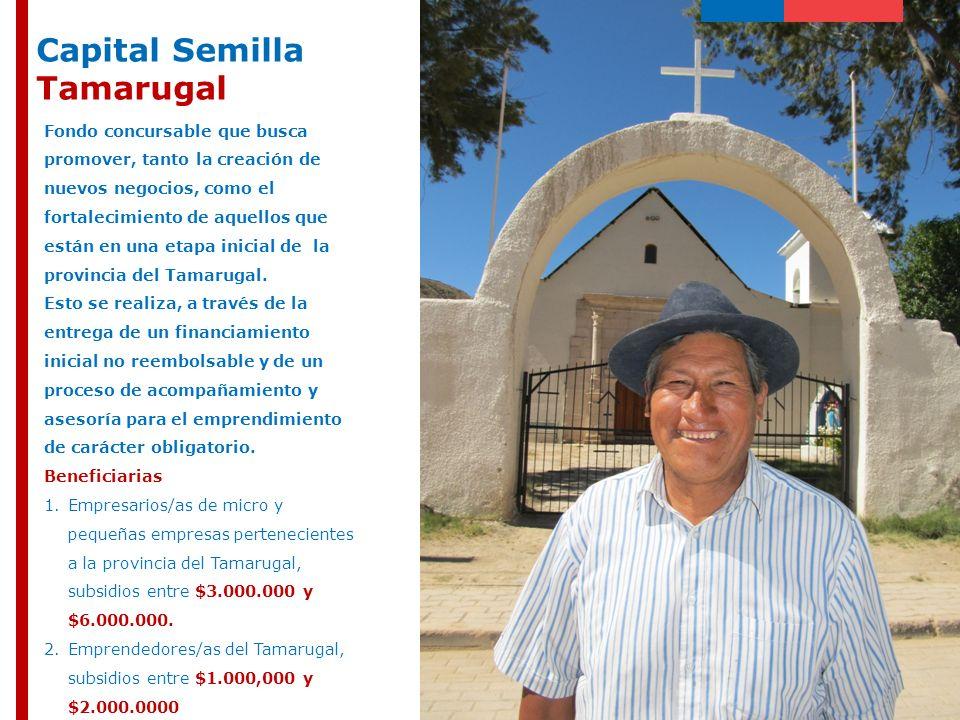 Capital Semilla Tamarugal Fondo concursable que busca promover, tanto la creación de nuevos negocios, como el fortalecimiento de aquellos que están en