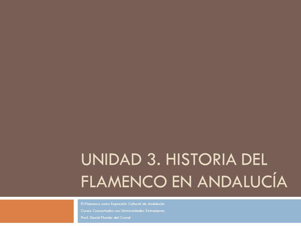 UNIDAD 3. HISTORIA DEL FLAMENCO EN ANDALUCÍA El Flamenco como Expresión Cultural de Andalucía Cursos Concertados con Universidades Extranjeras Prof. D