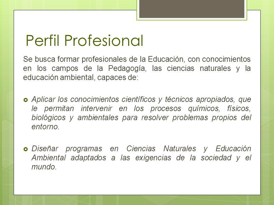 Perfil Profesional Se busca formar profesionales de la Educación, con conocimientos en los campos de la Pedagogía, las ciencias naturales y la educaci