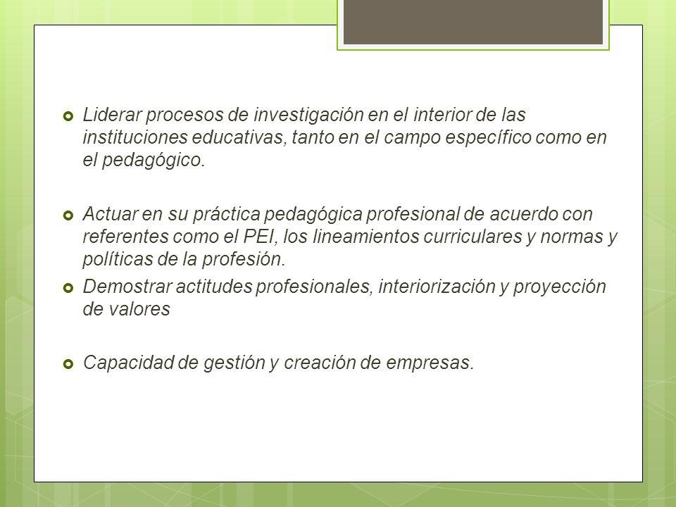 Liderar procesos de investigación en el interior de las instituciones educativas, tanto en el campo específico como en el pedagógico. Actuar en su prá