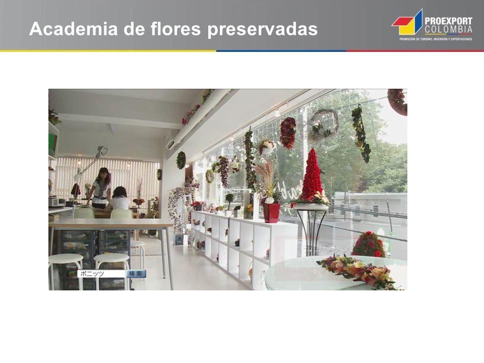 Academia de flores preservadas