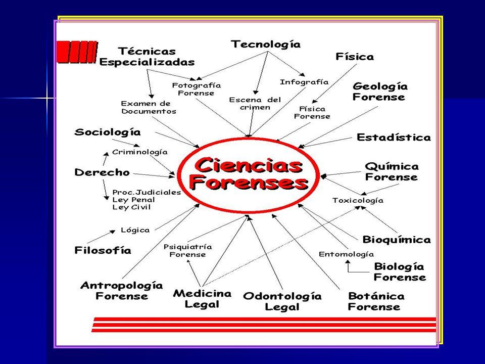 El Perito debe ser profesional, con título debidamente registrado en la Dirección General de Profesiones de la SEP y en la Secretaría de Salud; obviamente, los empíricos son admitidos en aquellas artes u oficios que no requieran la aplicación de conocimientos científicos, sino meramente prácticos.