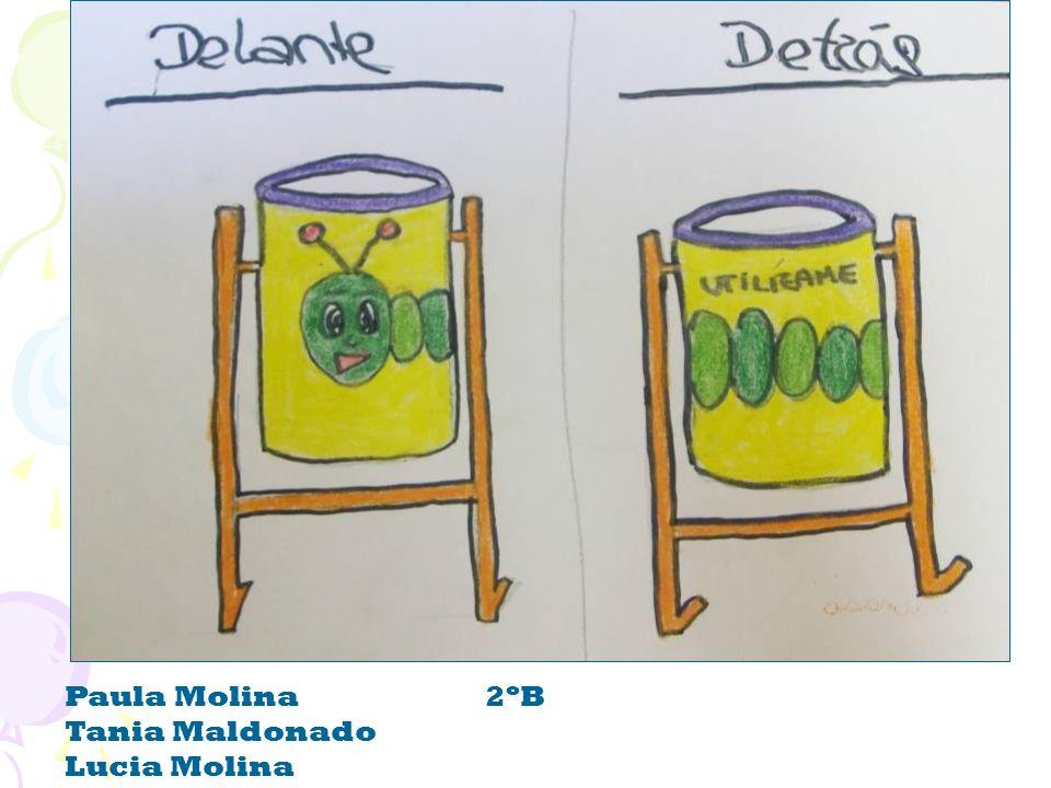 Paula Molina2ºB Tania Maldonado Lucia Molina