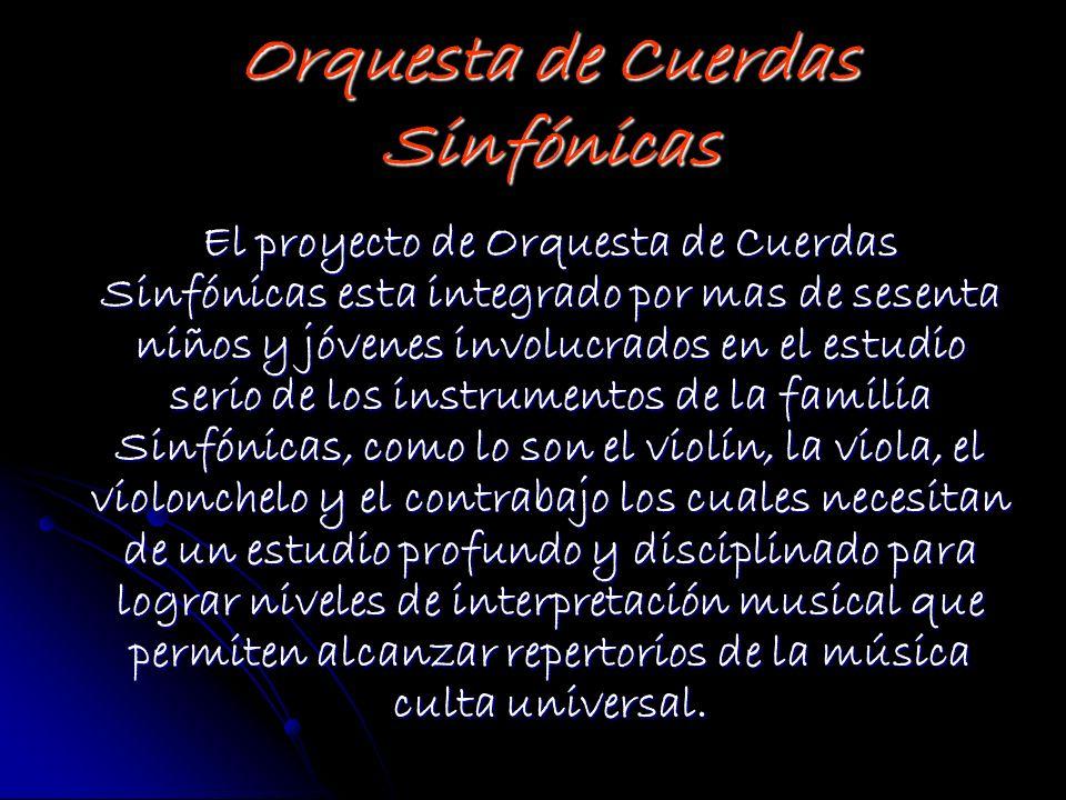 El proyecto de Orquesta de Cuerdas Sinfónicas esta integrado por mas de sesenta niños y jóvenes involucrados en el estudio serio de los instrumentos d