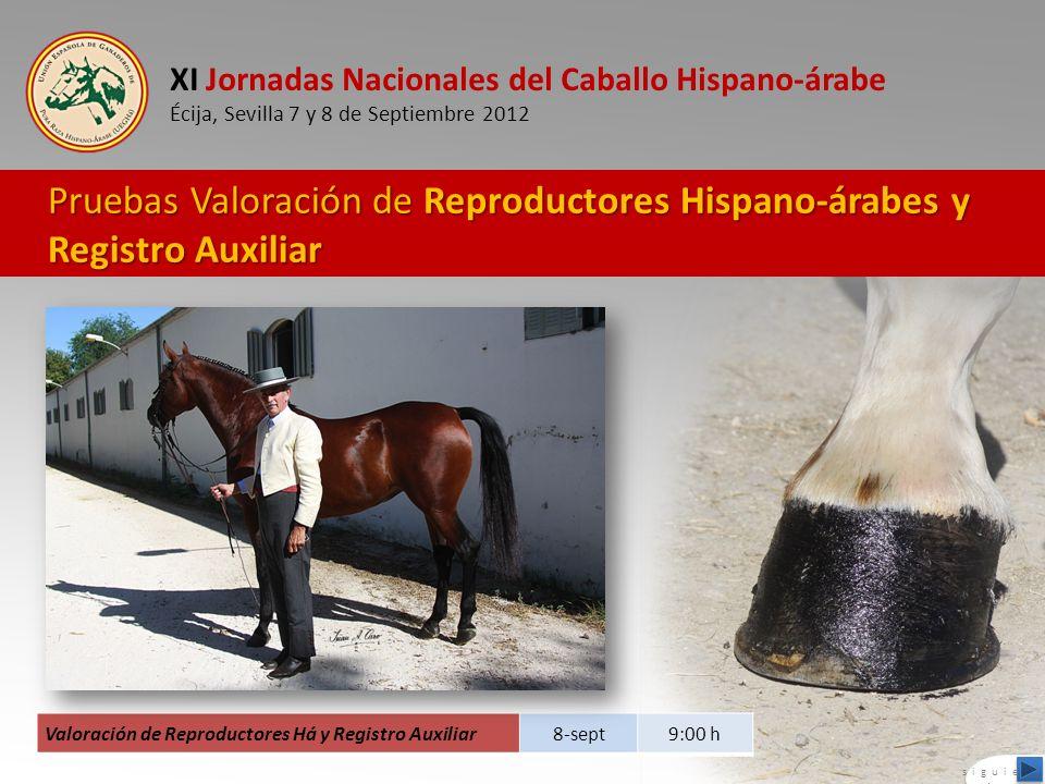 XI Jornadas Nacionales del Caballo Hispano-árabe Écija, Sevilla 7 y 8 de Septiembre 2012 Pruebas Valoración de Reproductores Hispano-árabes y Registro