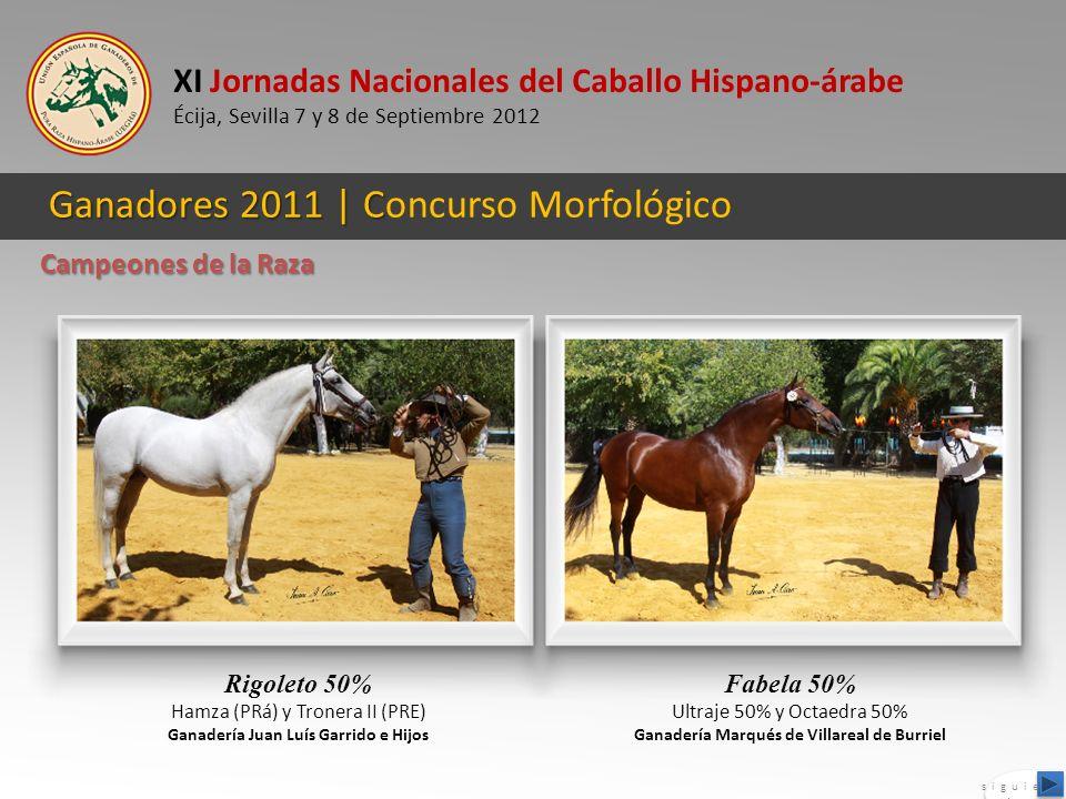 XI Jornadas Nacionales del Caballo Hispano-árabe Écija, Sevilla 7 y 8 de Septiembre 2012 Ganadores 2011 | C Ganadores 2011 | Concurso Morfológico Rigo