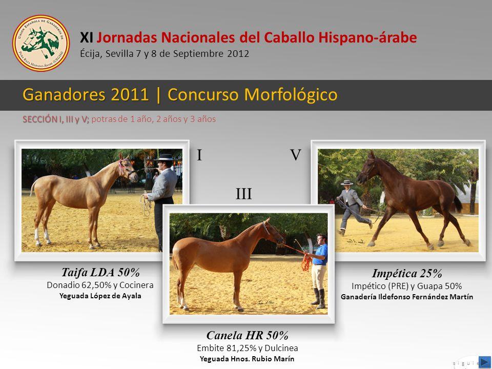 XI Jornadas Nacionales del Caballo Hispano-árabe Écija, Sevilla 7 y 8 de Septiembre 2012 Ganadores 2011 | C Ganadores 2011 | Concurso Morfológico Taif
