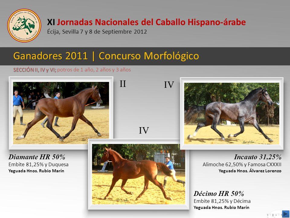 XI Jornadas Nacionales del Caballo Hispano-árabe Écija, Sevilla 7 y 8 de Septiembre 2012 Ganadores 2011 | C Ganadores 2011 | Concurso Morfológico Diam