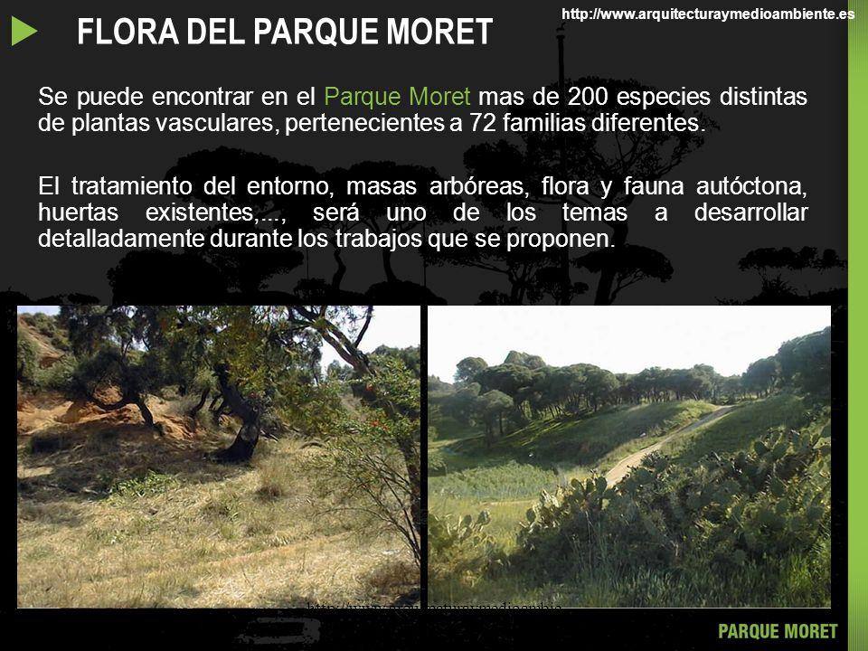 Se puede encontrar en el Parque Moret mas de 200 especies distintas de plantas vasculares, pertenecientes a 72 familias diferentes.