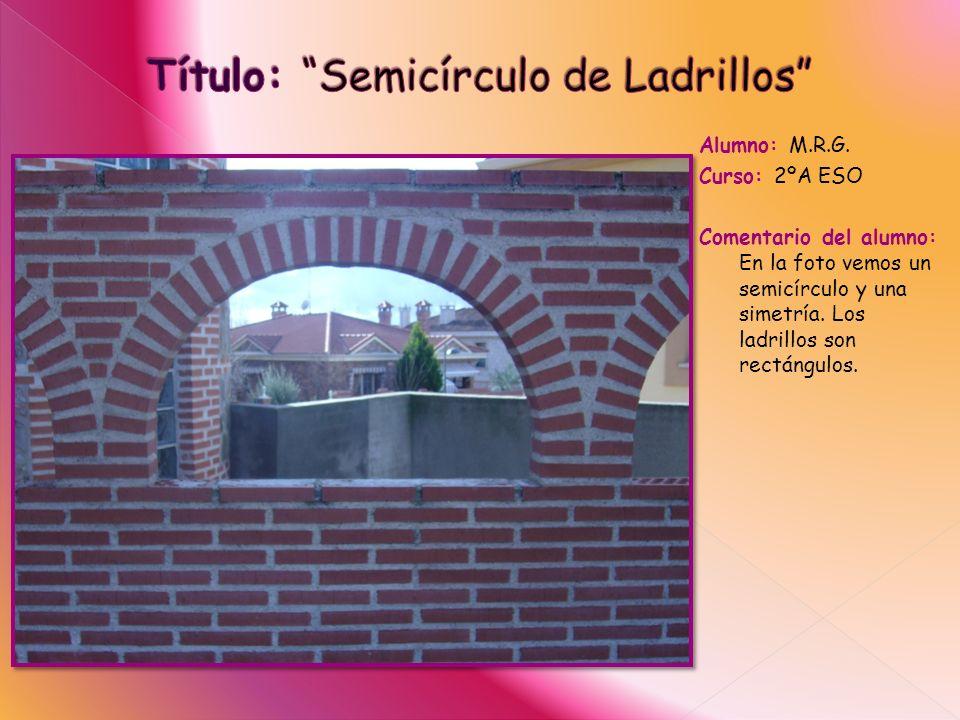 Alumno: M.R.G. Curso: 2ºA ESO Comentario del alumno: En la foto vemos un semicírculo y una simetría. Los ladrillos son rectángulos.