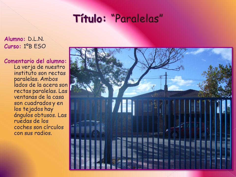 Alumno: D.L.N. Curso: 1ºB ESO Comentario del alumno: La verja de nuestro instituto son rectas paralelas. Ambos lados de la acera son rectas paralelas.