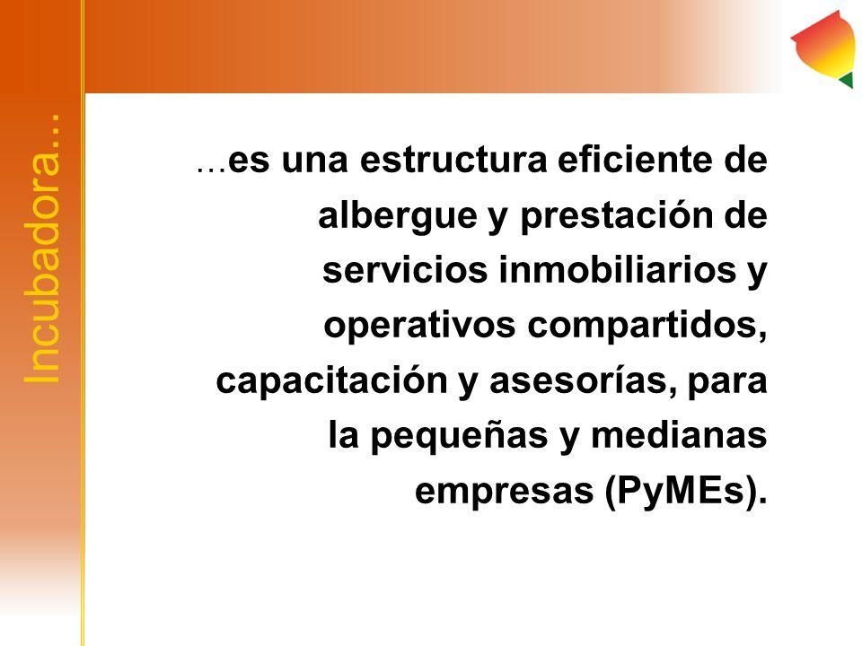 Incubadora Total Empresas incubadas48 Empresas en incubación17 Empresas activas en el mercado 16 Empresas fallidas15 Empleos generados176 Empleos actuales143