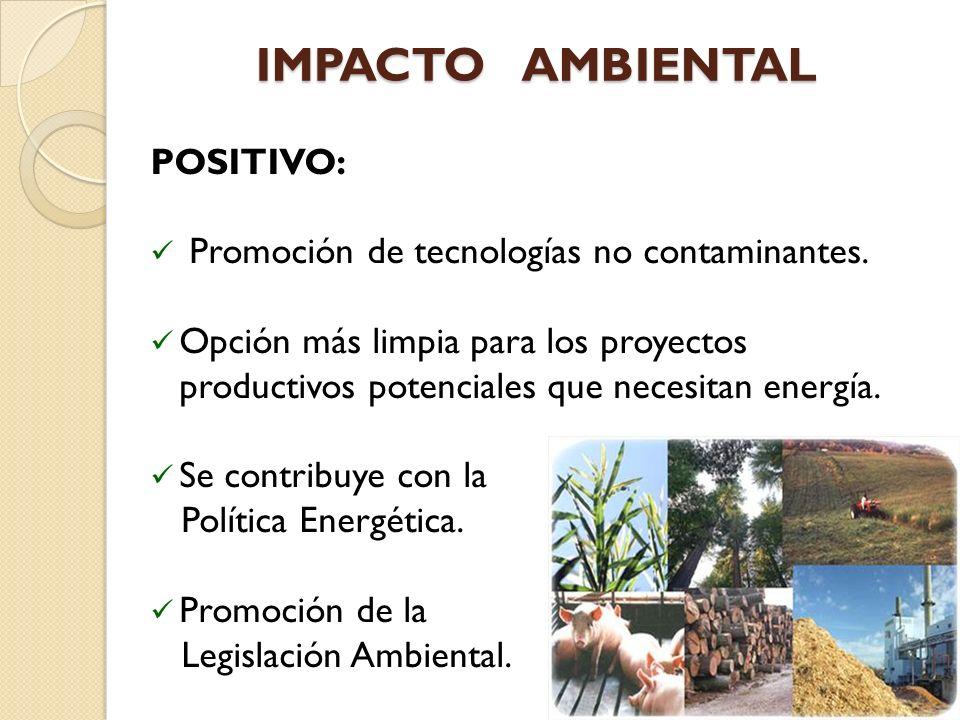 IMPACTO AMBIENTAL POSITIVO: Promoción de tecnologías no contaminantes.
