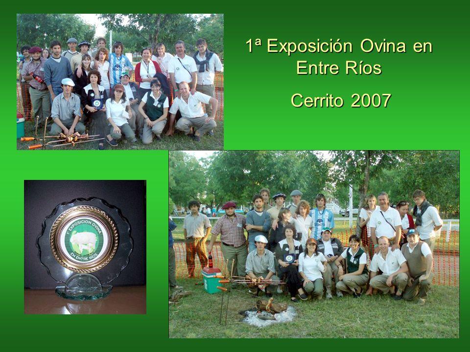 1ª Exposición Ovina en Entre Ríos Cerrito 2007
