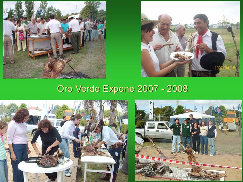 Oro Verde Expone 2007 - 2008
