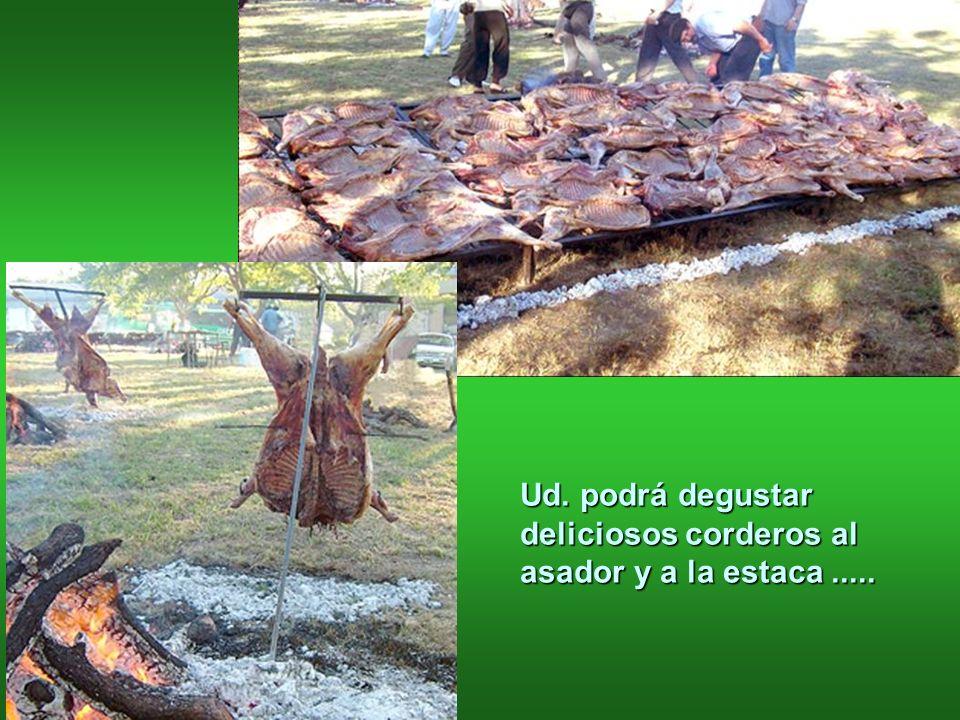 Ud. podrá degustar deliciosos corderos al asador y a la estaca.....