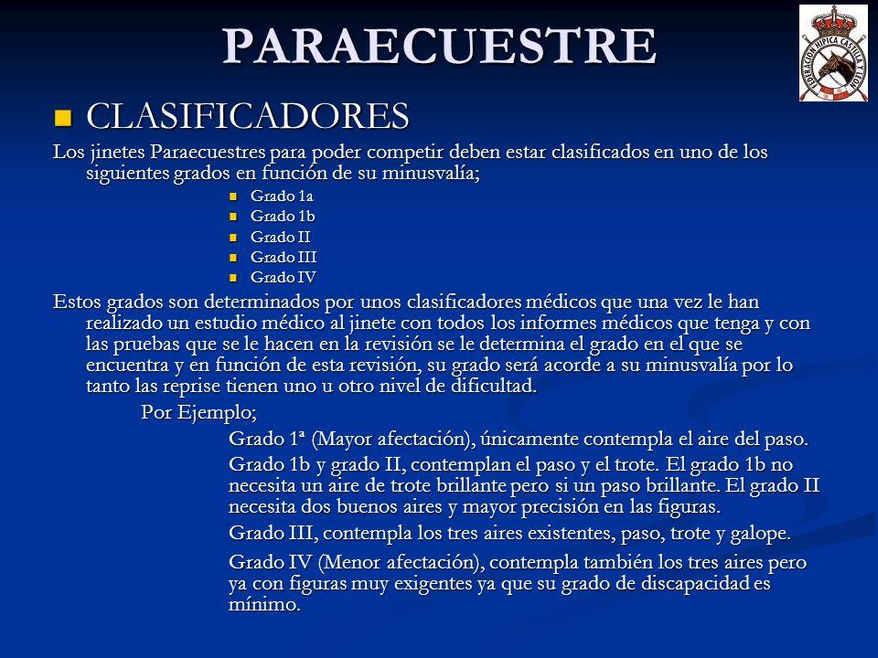 PARAECUESTRE CLASIFICADORES CLASIFICADORES Los jinetes Paraecuestres para poder competir deben estar clasificados en uno de los siguientes grados en f