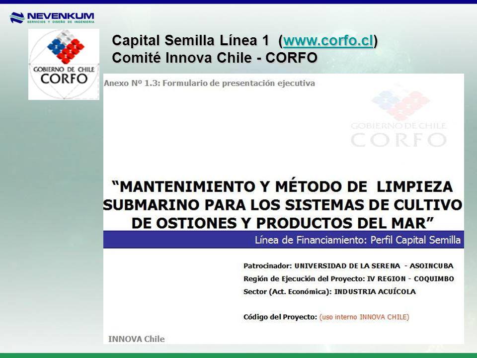 Capital Semilla Línea 1 (www.corfo.cl) www.corfo.cl Comité Innova Chile - CORFO