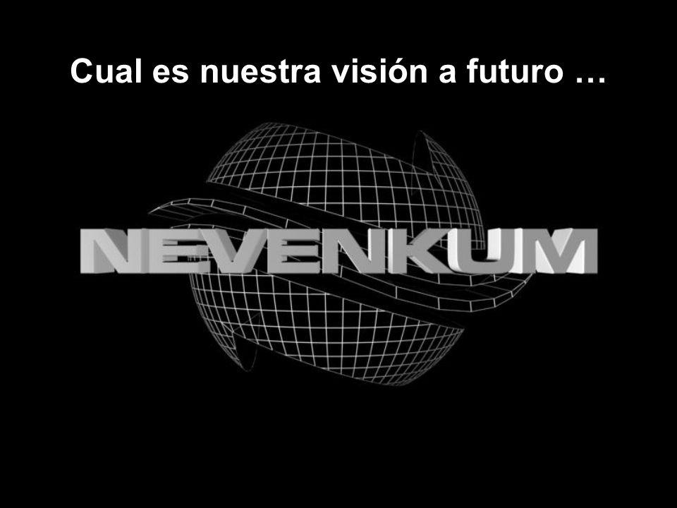 Cual es nuestra visión a futuro …