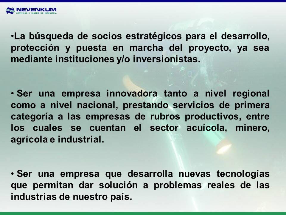 La búsqueda de socios estratégicos para el desarrollo, protección y puesta en marcha del proyecto, ya sea mediante instituciones y/o inversionistas. S