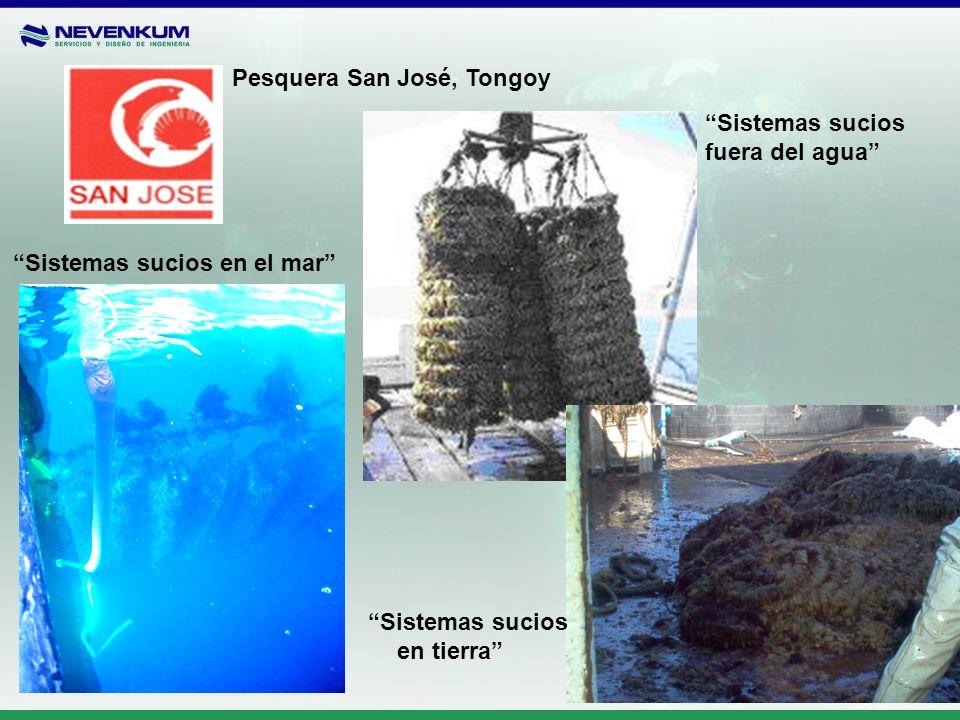 Pesquera San José, Tongoy Sistemas sucios en el mar Sistemas sucios fuera del agua Sistemas sucios en tierra