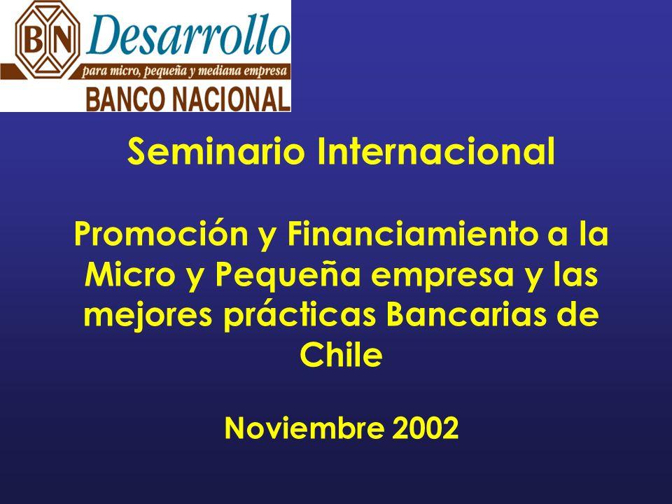 Seminario Internacional Promoción y Financiamiento a la Micro y Pequeña empresa y las mejores prácticas Bancarias de Chile Noviembre 2002
