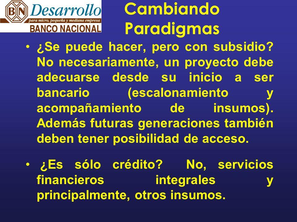Cambiando Paradigmas ¿Se puede hacer, pero con subsidio.