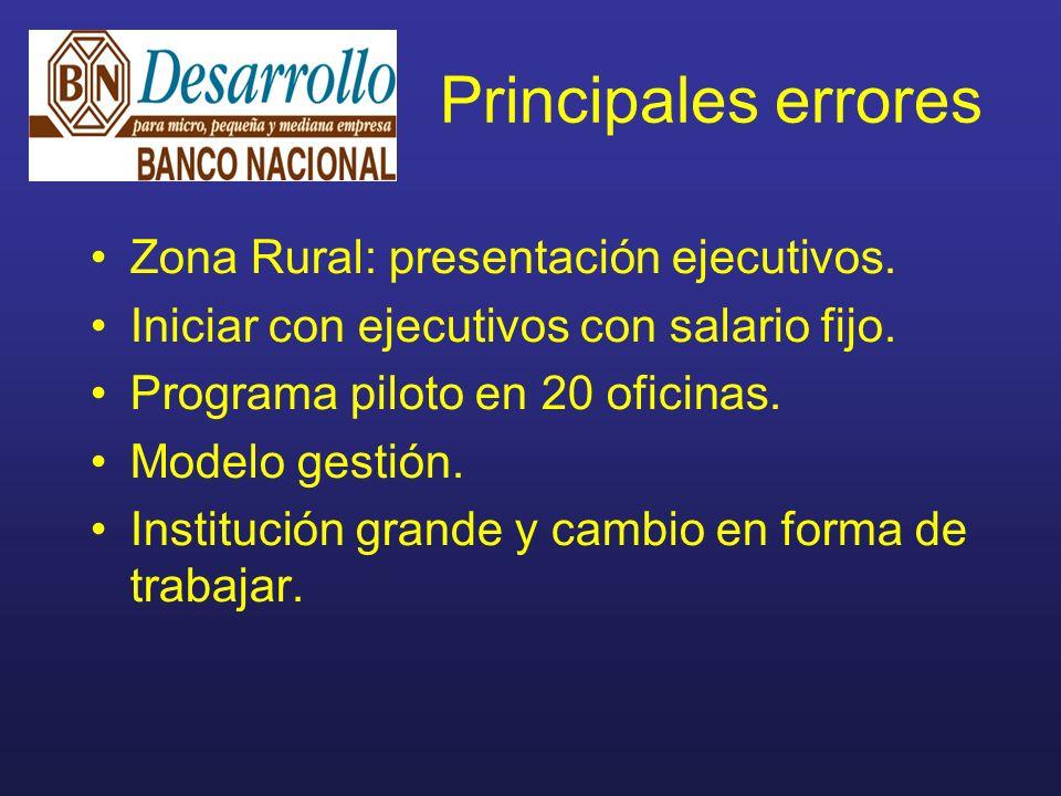 Principales errores Zona Rural: presentación ejecutivos.