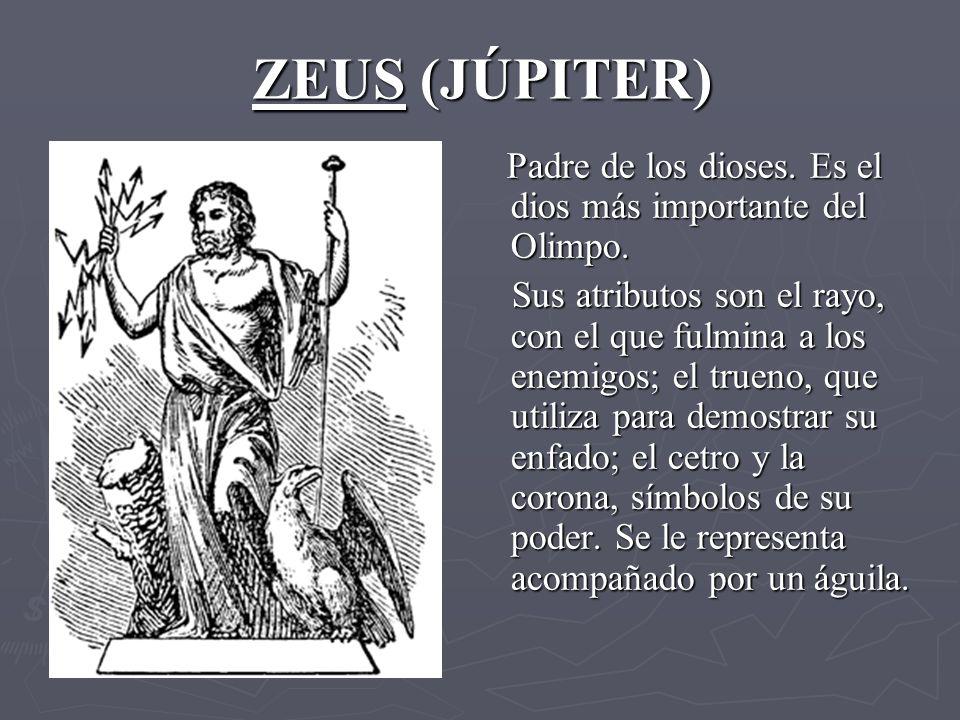 ZEUS (JÚPITER) Padre de los dioses.Es el dios más importante del Olimpo.