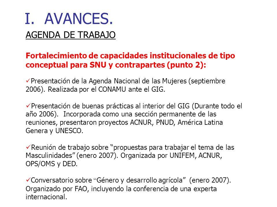 I.AVANCES. Elaboración del Plan Operativo Anual del GIG (Abril 2007).