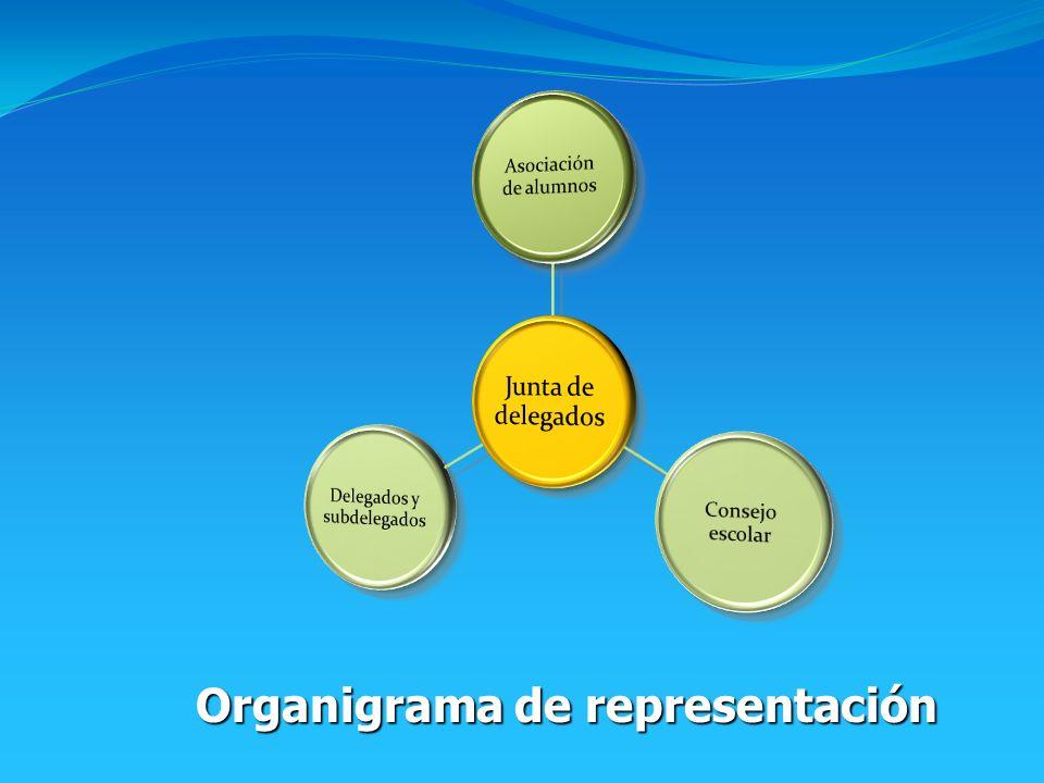 Organigrama de representación