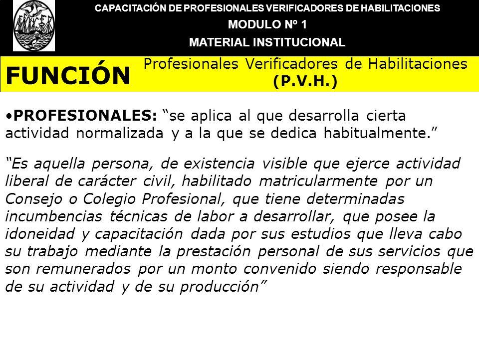 CAPACITACIÓN DE PROFESIONALES VERIFICADORES DE HABILITACIONES MODULO Nº 1 MATERIAL INSTITUCIONAL PROFESIONALES: se aplica al que desarrolla cierta act