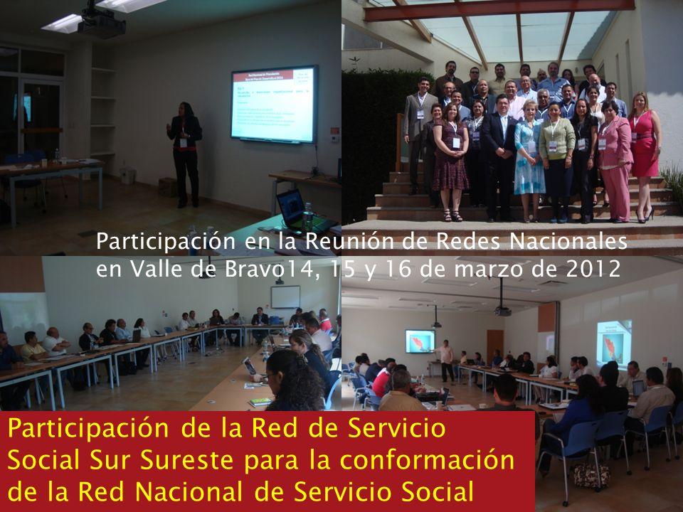 Participación en la Reunión de Redes Nacionales en Valle de Bravo14, 15 y 16 de marzo de 2012 Participación de la Red de Servicio Social Sur Sureste p