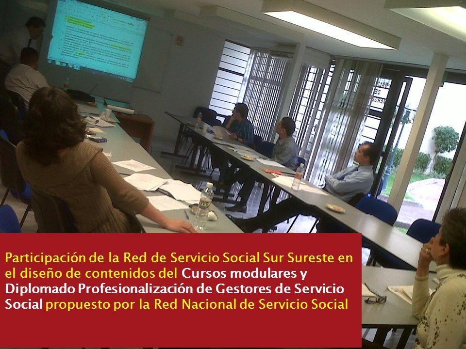 Participación de la Red de Servicio Social Sur Sureste en el diseño de contenidos del Cursos modulares y Diplomado Profesionalización de Gestores de S