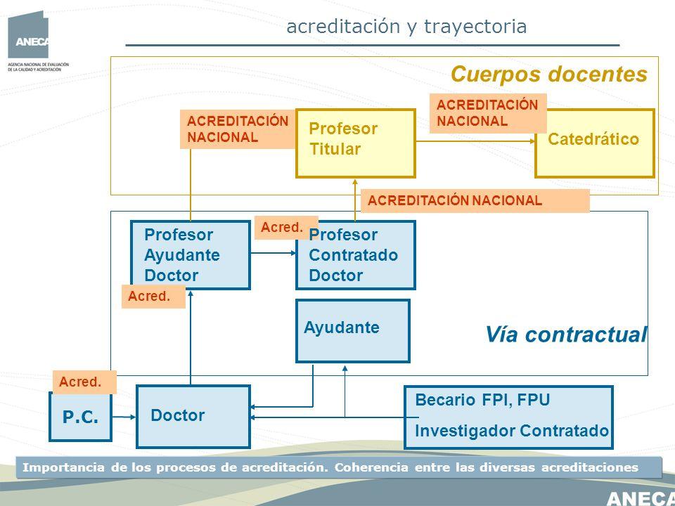 acreditación y trayectoria EVALUACIÓN INDIVIDUAL OBJETIVO: GARANTIZAR MÍNIMOS ÁMBITO ESTATAL COMISIONES FORMADAS POR VOCALES DE AGRUPACIONES DE ÁREAS DE CONOCIMIENTO CONSECUENCIA BINARIA: EVALUACIÓN POSITIVA O NEGATIVA CONVOCATORIA ABIERTA TODO EL AÑO EVALUACIÓN INTEGRAL DE TODAS LAS ACTIVIDADES EVALUACIÓN NO PRESENCIAL CARACTERÍSTICAS