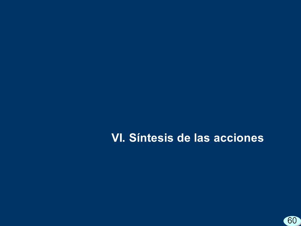 VI. Síntesis de las acciones 60