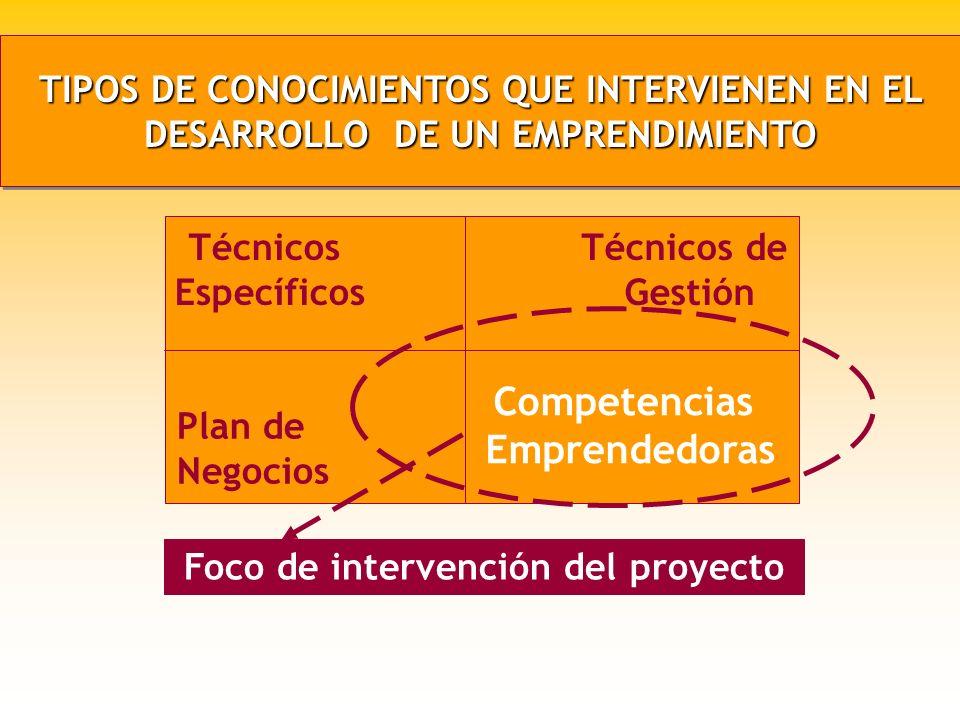 COMPETENCIAS PRINCIPALES EN FUNCION DE LA ETAPA DEL PROCESO EMPRENDEDOR COMPETENCIAS PRINCIPALES EN FUNCION DE LA ETAPA DEL PROCESO EMPRENDEDOR Gestac